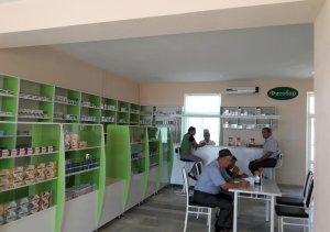 Navbahor district  pharmacy No.3